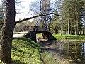 Дворцовый парк Гатчины-Palace Park in Gatchina - panoramio (5).jpg