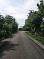Олешин - вулиця Гагаріна.jpg
