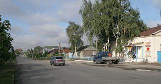Baltaysky District District in Saratov Oblast, Russia