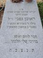 קברו של ראובן גפני בבית העלמין בקיבוץ דברת צילום אלי אלון.png