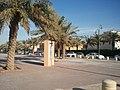 حديقة الروضة 12-2011 - panoramio.jpg