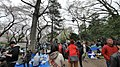 井の頭公園 - panoramio (23).jpg