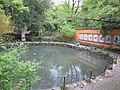 国清寺放生池 - panoramio (1).jpg