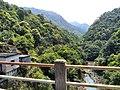新丰司茅坪林场20150412 - panoramio (37).jpg