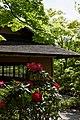 昭和記念公園 日本庭園 - panoramio (4).jpg