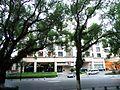 桂林市漓江边景色 - panoramio (21).jpg