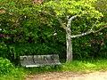 烏帽子形公園にて Eboshigata-kōen 2010.4.30 - panoramio.jpg