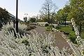 白い散歩道 - panoramio.jpg