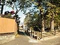 見事な枝ぶり - panoramio.jpg