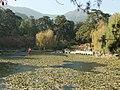 静翠湖 - Jingcui Lake - 2010.11 - panoramio.jpg