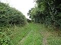 -2018-08-15 Paston Way Footpath in the parish of Gimingham (5).JPG