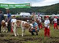 0.2014 Junge Landwirte aus Beskiden, Rudawka Rymanowska.JPG