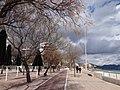 07560 Cala Millor, Balearic Islands, Spain - panoramio (4).jpg
