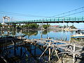 09953jfFields Wawa Shrimps Bridges Beaches Orion Bataanfvf 28.JPG