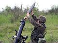 11 Dywizja Kawalerii Pancernej - rok 2010 (04).jpg