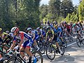 19e Étape Tour France 2020 - Col France - Meillonnas (FR01) - 2020-09-18 - 31.jpg