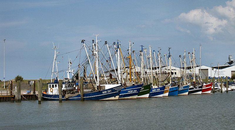 File:2009 07 Norddeich Fischereiboote.JPG