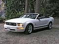2009 Mustang2009-08-01.jpg
