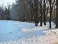 2012-01-31 Гатчина. Нижний Голландский сад (1).JPG