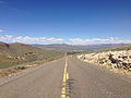 2014-06-22 13 00 47 View north along Nevada State Route 231 (Angel Lake Road) about 7.2 miles north of Angel Lake.JPG