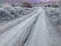 2014-10-19 17 34 20 Severe erosion along Jefferson Summit Road at about 8380 feet east of Jefferson Summit, Nevada.JPG