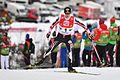 20161218 FIS WC NK Ramsau 0590.jpg
