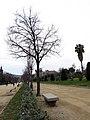 365 Parc de la Ciutadella, passeig central.JPG