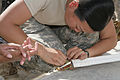 49th MPs Conduct Customs Operations in Iraq DVIDS272440.jpg