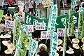 517taiwanprotest 2.jpg