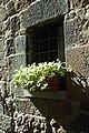 53026 Pienza SI, Italy - panoramio (5).jpg