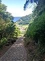 Açores IMG 1192 (36126443681).jpg