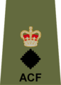 ACF LtCol.png