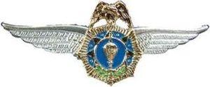 AE-COPSD Paratroopers Wings - Image: AE COPSD Paratroopers Wings