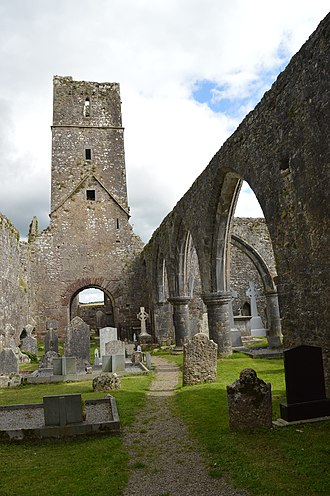Kilcrea Friary - Arches and graves stones