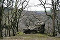 A Rock on the Hillside - geograph.org.uk - 797581.jpg