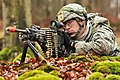 A U.S. Soldier assigned to the 2nd Battalion, 503rd Infantry Regiment, 173rd Infantry Brigade Combat Team provides cover during exercise Combined Resolve 2013 at the 7th Army Joint Multinational Training 131115-A-BS310-353.jpg