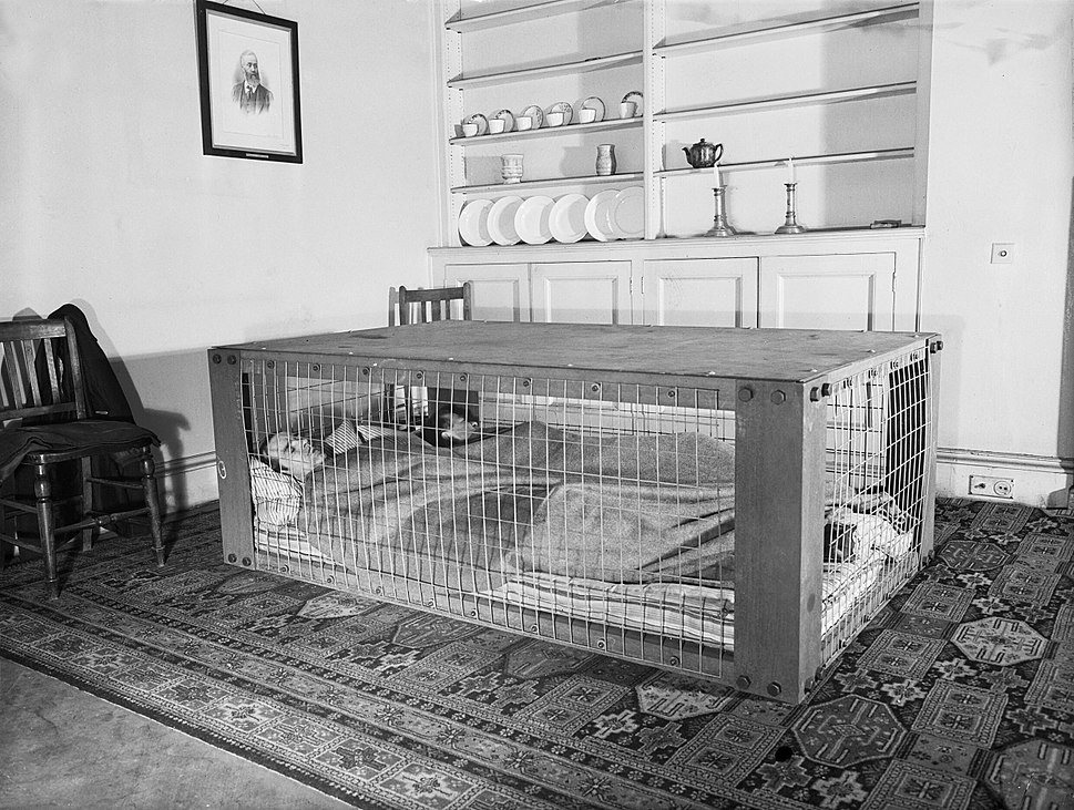 A couple sleeping in a Morrison shelter during the Second World War. D2055