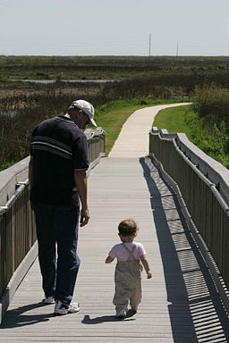 A man and toddler take a leisurely walk on a boardwalk