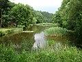 A peaceful pond (9579108382).jpg
