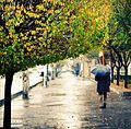 A rainy day in Arak - Autumn 2012.jpg