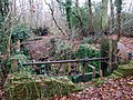 A sluice in the woods - viewed from the south - geograph.org.uk - 1080929.jpg