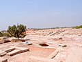 A view of Moenjodaro.jpg