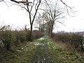 A winter's walk - geograph.org.uk - 402968.jpg