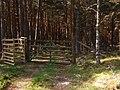 Access to Loch - geograph.org.uk - 793913.jpg