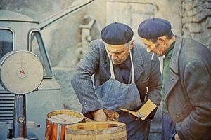 Anchovies as food - Seller of anchovies in Piedmont, Italy, 1971