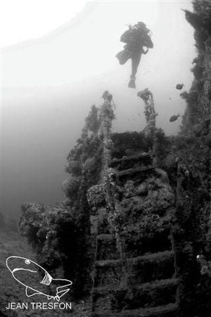 HMS Pelorus (J291) - A diver over the wreck