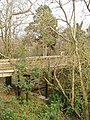 Aerial walkway, Stover Country Park - geograph.org.uk - 409018.jpg
