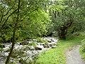 Afon Rhaeadr-fawr - geograph.org.uk - 933614.jpg
