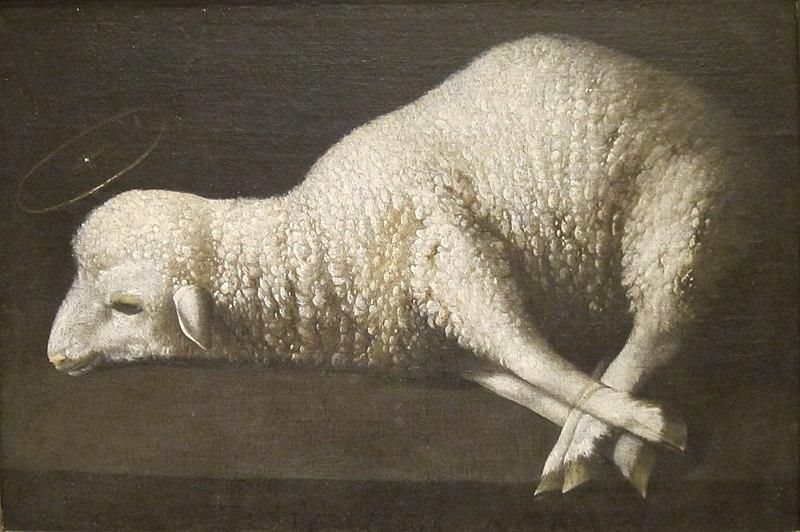 File:Agnus Dei (The Lamb of God) by Zurbarán, San Diego Museum of Art.JPG