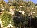 Agriturismo Rocca di Pierle, Cortona - panoramio (8).jpg